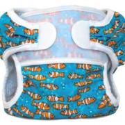 Bummis swimmi-clown-fish