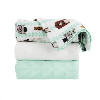 Tula Blanket Clever